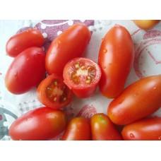 Roma domatesi salkım domates etli salçalık