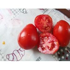 Kırmızı armut domates salçalık
