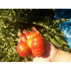 İri dilimli sırık domates