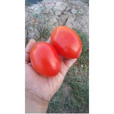 İran domatesi etli salçalık