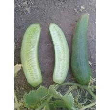 Badem salatalık