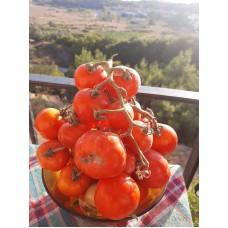 Delice(Deşti) salkım domates
